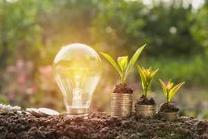 IETF - energy innovation concept. Lightbulb shown next to coins and plants